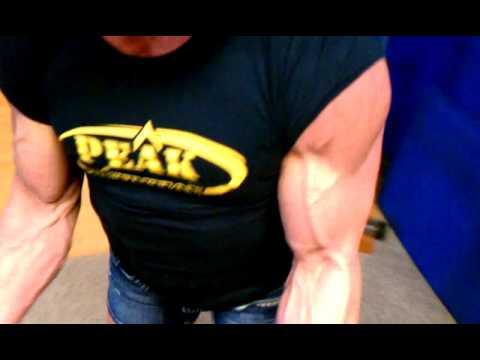 Dena Westerfield – Biceps Workout
